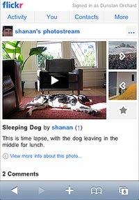 flickr_video.jpg