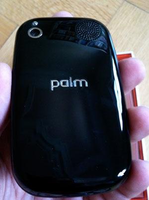 palm_back.jpg