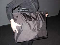 applestorebag